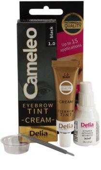 Delia Cosmetics Cameleo profesionalna kremasta barva za obrvi brez amoniaka