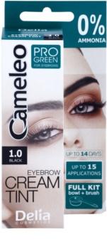 Delia Cosmetics Cameleo Pro Green tinta per sopracciglia senza ammoniaca