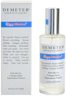 Demeter Clean Windows kölnivíz unisex 120 ml