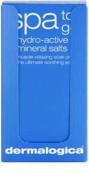 Dermalogica Body Therapy sel minéral hydro-actif pour le bain