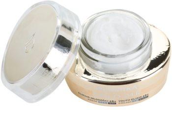 Dermika Gold 24k Total Benefit crème rajeunissante luxe 45+