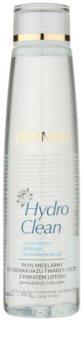 Dermika HydroClean apa pentru  curatare cu particule micele pe fata si ochi