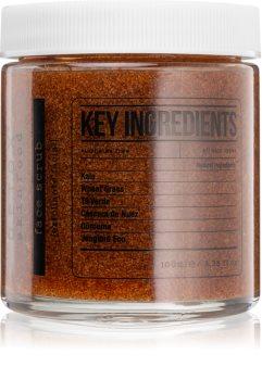 Detox Skinfood Key Ingredients reinigendes Hautpeeling