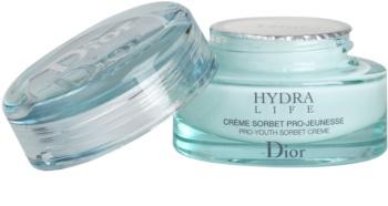 Dior Hydra Life Feuchtigkeitscreme für normale Haut und Mischhaut