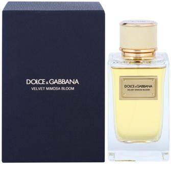 Dolce & Gabbana Velvet Mimosa Bloom Eau de Parfum voor Vrouwen  150 ml