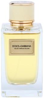 Dolce & Gabbana Velvet Mimosa Bloom Parfumovaná voda pre ženy 150 ml