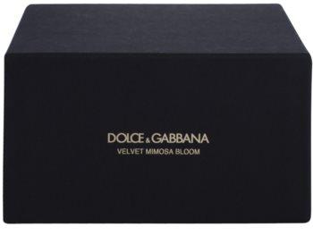 Dolce & Gabbana Velvet Mimosa Bloom Eau de Parfum for Women 50 ml