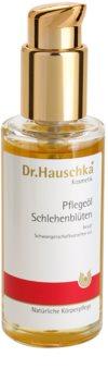 Dr. Hauschka Body Care ulei de corp din porumbar