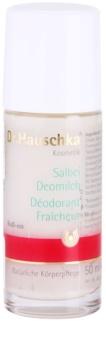 Dr. Hauschka Body Care zsálya dezodor