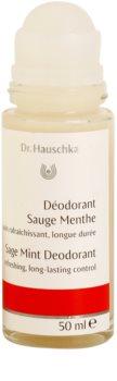 Dr. Hauschka Body Care deodorant se šalvějí a mátou