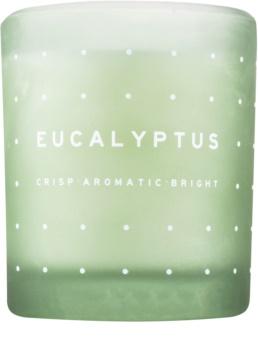 DW Home Eucalyptus ароматизована свічка  371,3 гр