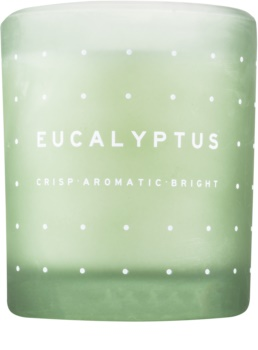 DW Home Eucalyptus scented candle