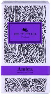 Etro Ambra toaletní voda unisex 100 ml
