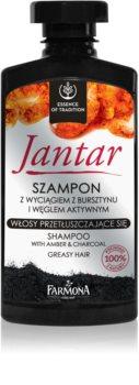 Farmona Jantar σαμπουάν με ενεργά συστατικά του άνθρακα για λιπαρά μαλλιά