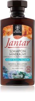 Farmona Jantar minerálny šampón pre všetky typy vlasov