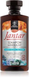 Farmona Jantar sampon mineral pentru toate tipurile de par