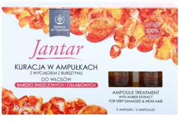 Farmona Jantar intenzivní kúra pro velmi poškozené vlasy
