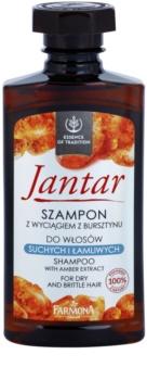 Farmona Jantar szampon do włosów suchych i łamliwych