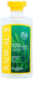 Farmona Radical Dry & Brittle Hair champô restruturante