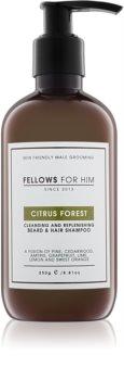 Fellows for Him Citrus Forest šampón na vlasy a fúzy