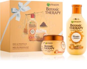 Garnier Botanic Therapy Honey kozmetická sada I.