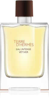 Hermès Terre d'Hermès Eau Intense Vétiver parfémovaná voda pro muže 100 ml