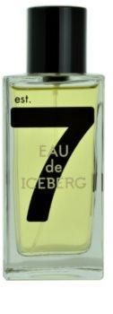 Iceberg Eau de Iceberg 74 Pour Homme woda toaletowa dla mężczyzn 100 ml