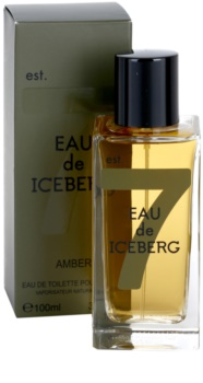 Iceberg Eau de Amber toaletní voda pro muže 100 ml