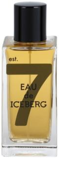 Iceberg Eau de Iceberg Amber toaletní voda pro muže 100 ml