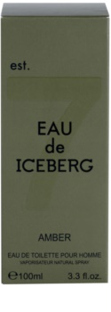 Iceberg Eau de Iceberg Amber Eau de Toilette for Men 100 ml