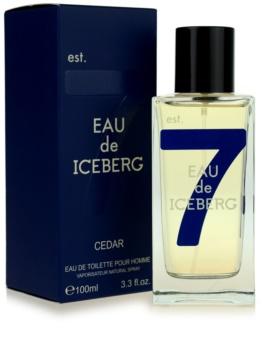 Iceberg Eau de Iceberg Cedar Eau de Toilette for Men 100 ml