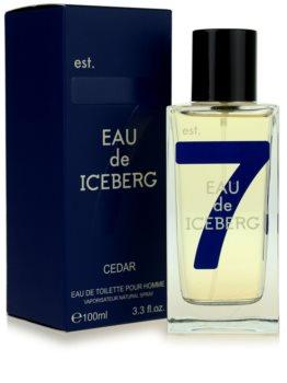Iceberg Eau de Iceberg Cedar toaletna voda za moške 100 ml