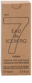 Iceberg Eau de Iceberg Cedar toaletná voda tester pre mužov 100 ml