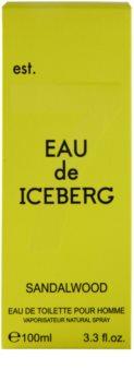 Iceberg Eau de Iceberg Sandalwood Eau de Toilette para homens 100 ml