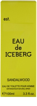 Iceberg Eau de Iceberg Sandalwood toaletní voda pro muže 100 ml