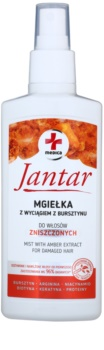 Ideepharm Medica Jantar bezoplachová vlasová péče pro poškozené vlasy