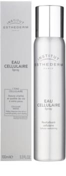 Institut Esthederm Cellular Water brume visage revitalisante