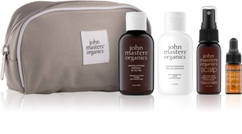 John Masters Organics Travel Kit Dry Hair kit di cosmetici III.