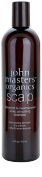 John Masters Organics Scalp Stimulating Shampoo For Healthy Scalp
