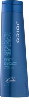 Joico Moisture Recovery Shampoo für trockenes Haar