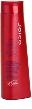 Joico Color Endure szampon do blond i siwych włosów