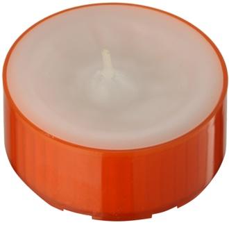Kringle Candle Pumpkin Sage candela scaldavivande 35 g