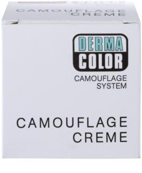 Kryolan Dermacolor Camouflage System krémový korektor make-up v jednom