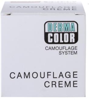 Kryolan Dermacolor Camouflage System krémový korektor a make-up v jednom