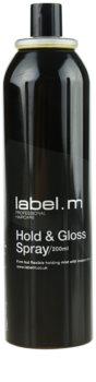 label.m Complete lak za lase za učvrstitev in sijaj