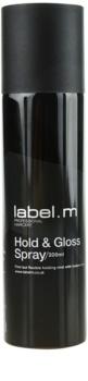 label.m Complete lak na vlasy pro zpevnění a lesk