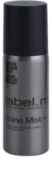 label.m Complete sprej pre lesk