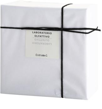 Laboratorio Olfattivo Cozumel eau de parfum férfiaknak 100 ml