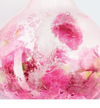 Lancôme Rose Sugar Scrub gladilni piling za občutljivo kožo