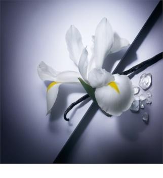 Lancôme La Vie Est Belle Eau de Parfum for Women 200 ml